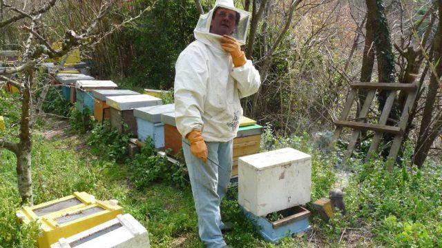 Nanni e le api